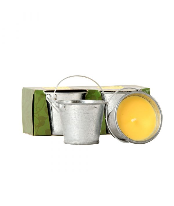 Set of 2 Small Tin Buckets- RID 1458-Insect Candles